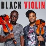 Black-Violin-thumb.jpg