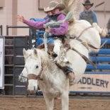 rodeo2018_thumb.jpg